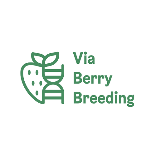 Strawberry logo with the title 'Via Berry Breeding Logo'