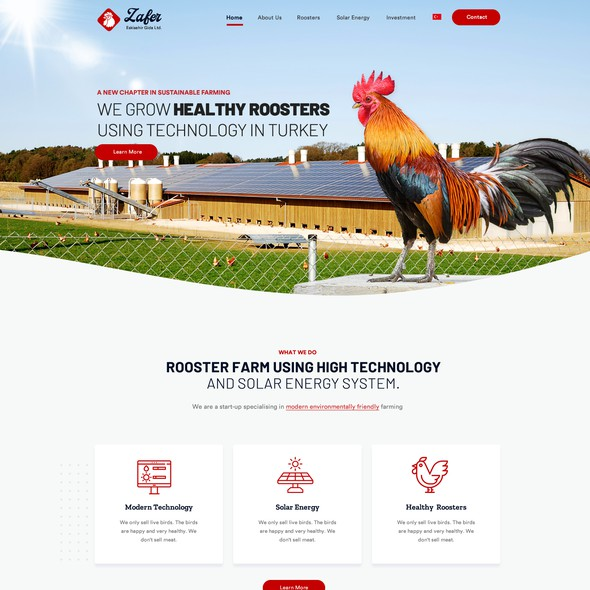 Farm website with the title 'Creative website for agriculture company'
