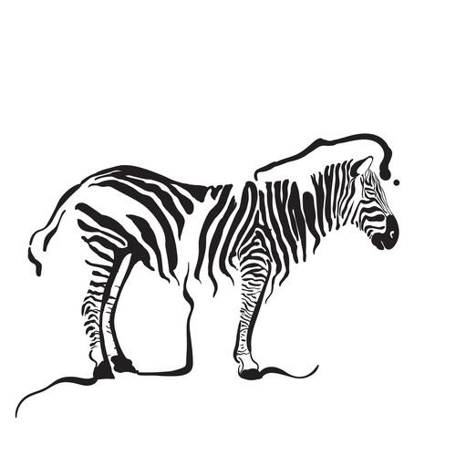 Zebra design with the title 'Zebra illustration'