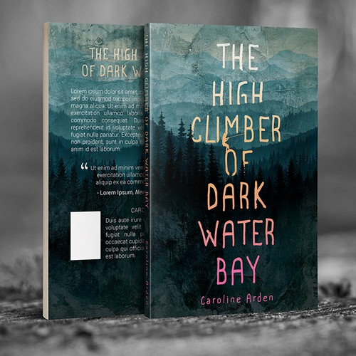 Eye-catching design with the title 'The High Climber of Dark Water Bay'
