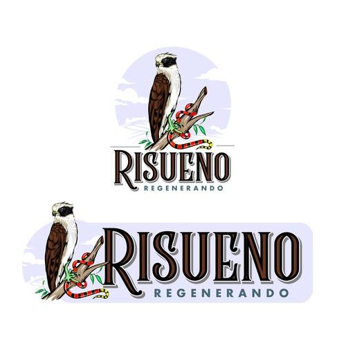 Falcon wings logo with the title 'Falcon, Risueño'
