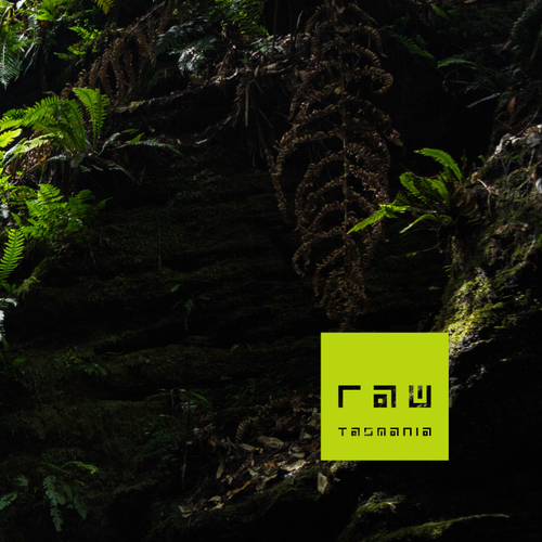 Clean and simple logo with the title 'RAW'