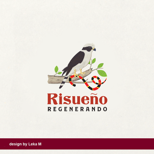Falcon wings logo with the title 'Risueno Regenerado'