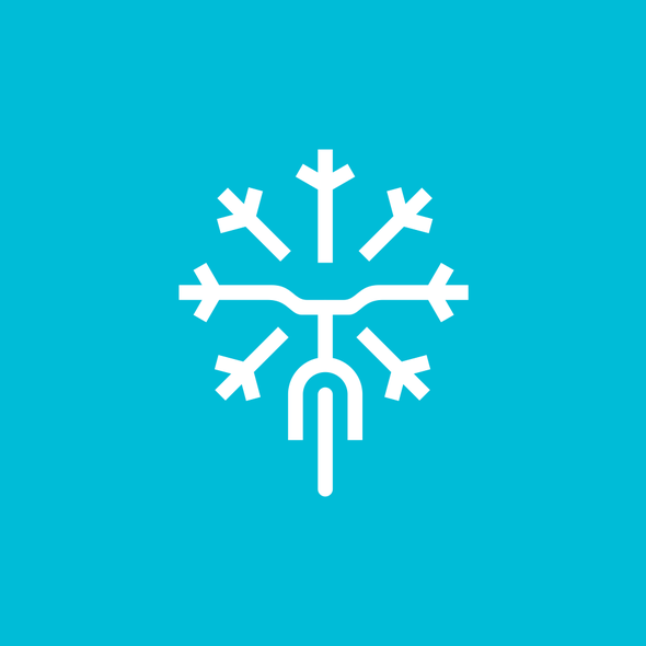Snowflake design with the title 'snow + bicycle'