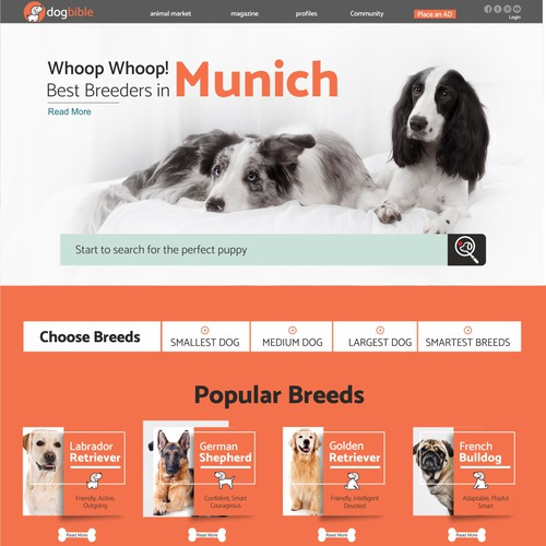 Pet website with the title 'Webdesign for online dog platform / marketplace / magazine'