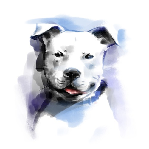 Portrait t-shirt with the title 'In contest Help Pit Bulls in Need by Creating a New Tshirt Design for Our Pittie Rescue!'