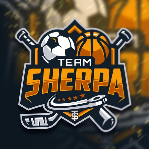Yellow logo with the title 'TeamSherpa'