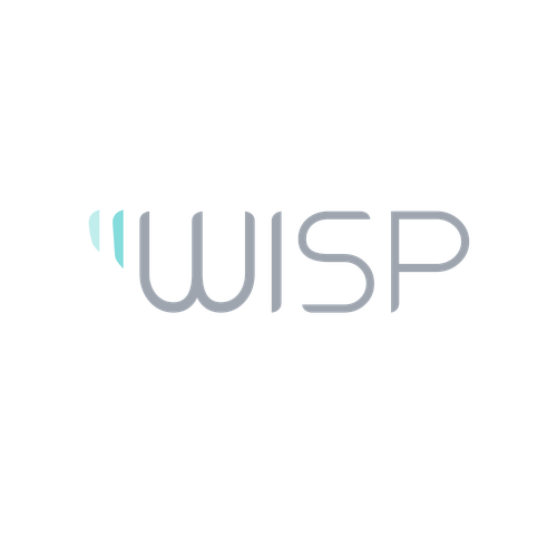 Blinds logo with the title 'WISP Logo Design'
