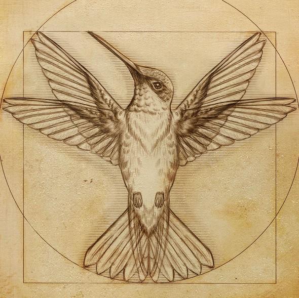 Symmetrical design with the title 'Da vinci hummingbird Illustration'