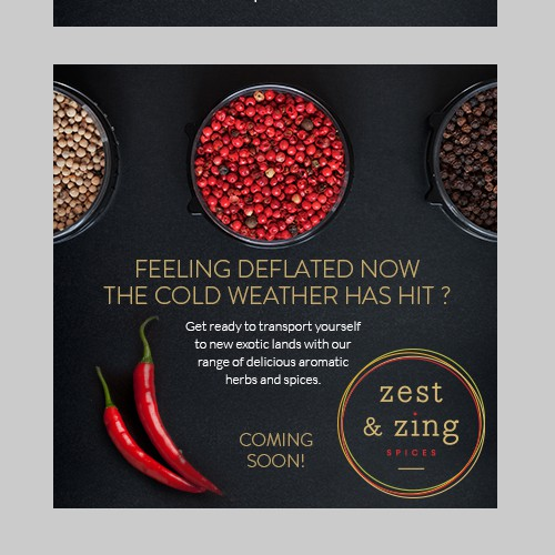Pepper design with the title 'Banner design for Zest & Zing'