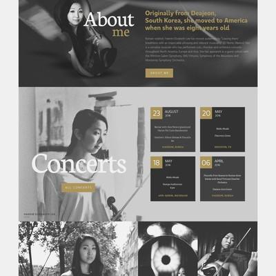 Violinist solo, artistic director personal web page