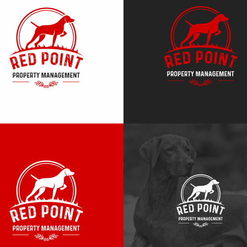 Property management logo with the title 'logo RedPoint'