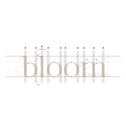 Bloom logo with the title 'Development process.'