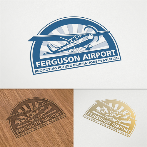 Aircraft logo with the title 'Logo concept for Ferguson Airport'