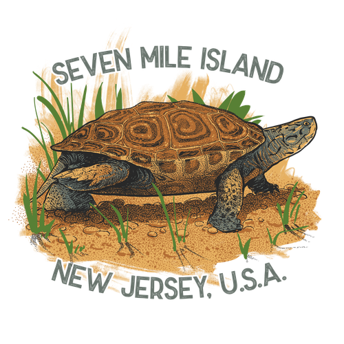 Wildlife design with the title 'diamond back terrapin for seashore outfitters'