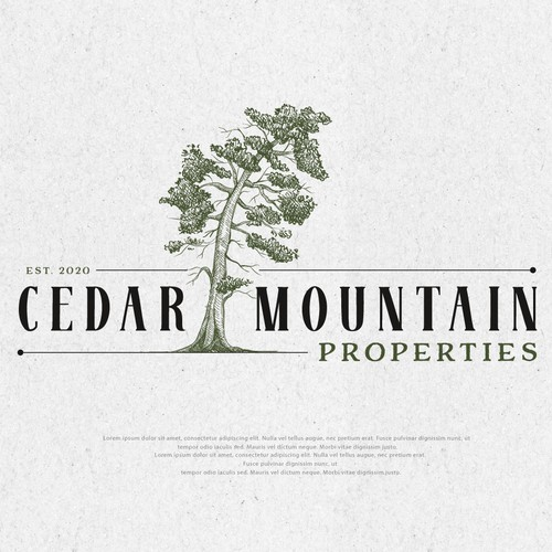Mortgage design with the title 'CEDAR MOUNTAIN PROPERTIES'