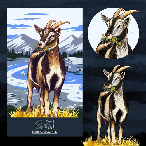 Goat illustration with the title 'Nigerian Dwarf Goat Illustration'