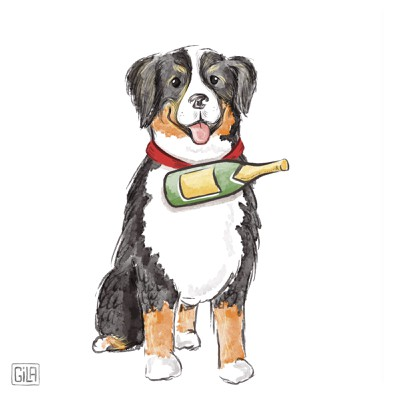 Bernese dog illustration, artistic watercolor style