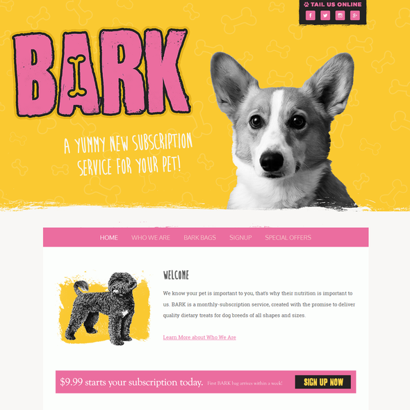 Animal design with the title 'BARK'