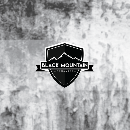 Grayscale logo with the title 'Black Mountain Dynamics Security Company'