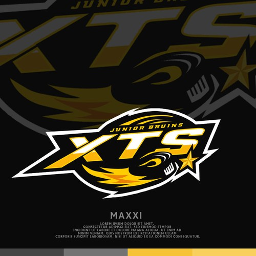 Star design with the title 'Hockey Logo'