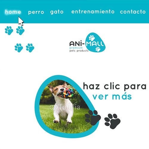 Animal hospital design with the title 'logo and website design'