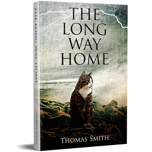 Artsy book cover with the title 'The Long Way Home'