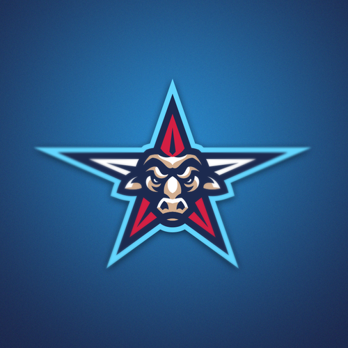 Taurus logo with the title 'Bull-Star concept'