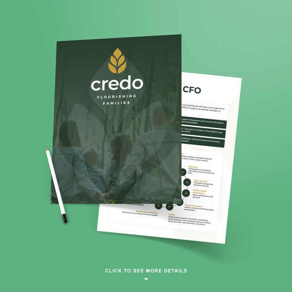 Professional design with the title 'Financial Business Brochure '