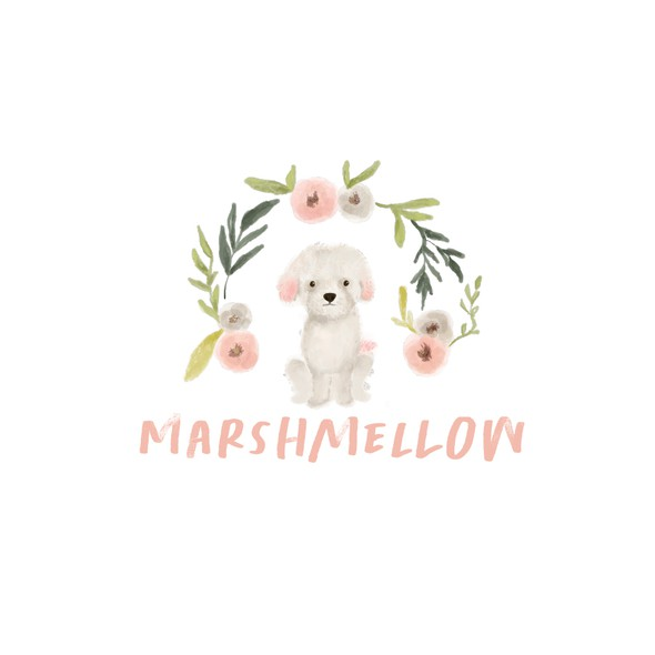 Watercolor brand with the title 'Marshmellow'