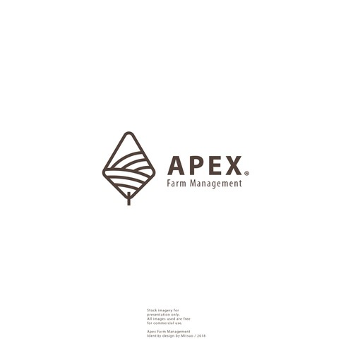 Land design with the title 'APEX \ Brand Logo'