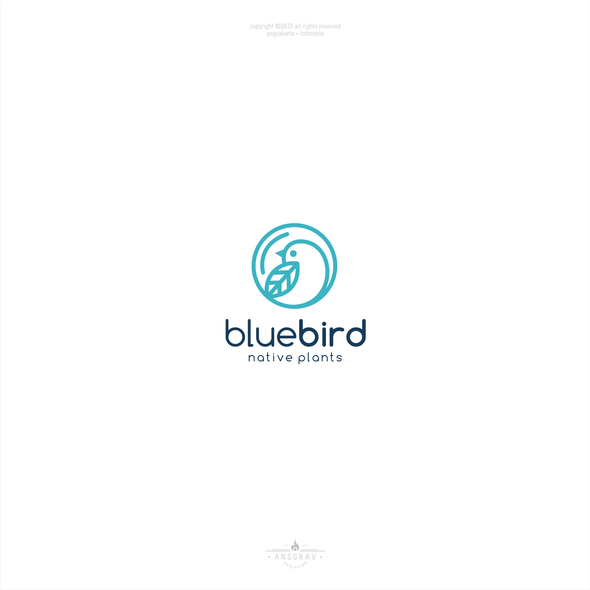 Bluebird logo with the title 'Blue Bird'