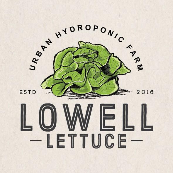 Hydroponics logo with the title 'lettuce farm'