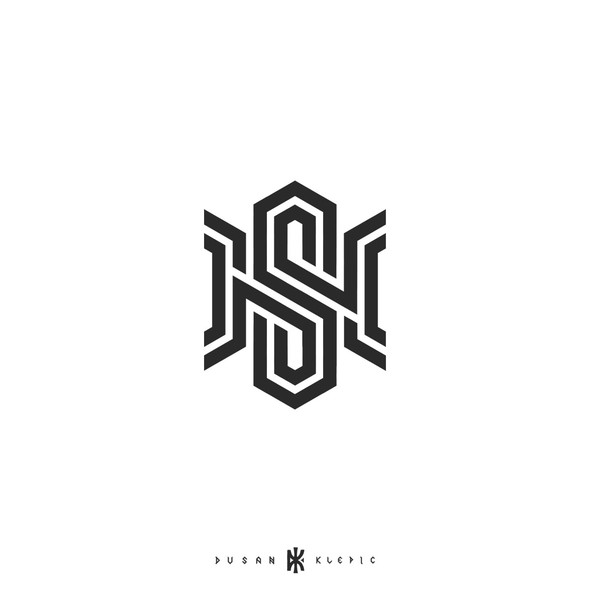 Epic logo with the title 'NS monogram'