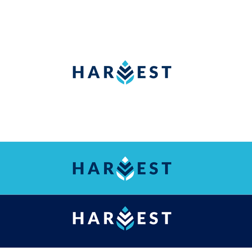 Harvest design with the title 'Harvest'