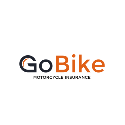 Go logo with the title 'Logo concept for GoBike'