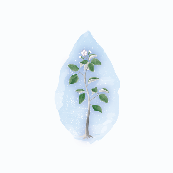 Design with the title 'watercolor tree sapling'