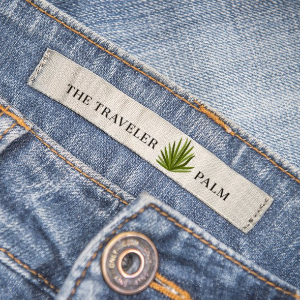 Tropical leaf logo with the title 'Minimalistic Logo Design for Eco Friendly Fashion Store'