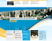 Website design by Vaishali Ayya