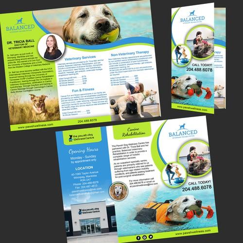Design a brochure for canine veterinary rehabilitation