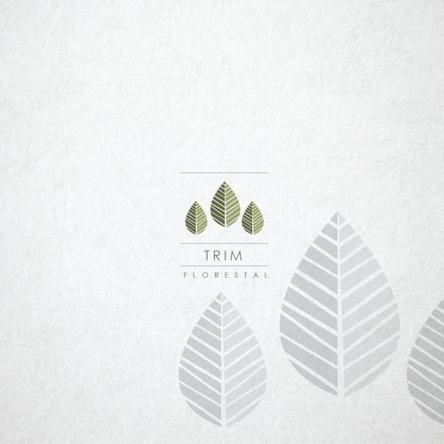 Diseño finalista de Carksas