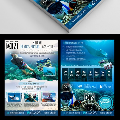 Design an eye catching flyer for snorkel tours on the Ningaloo Reef! Design by BrandMeHigh