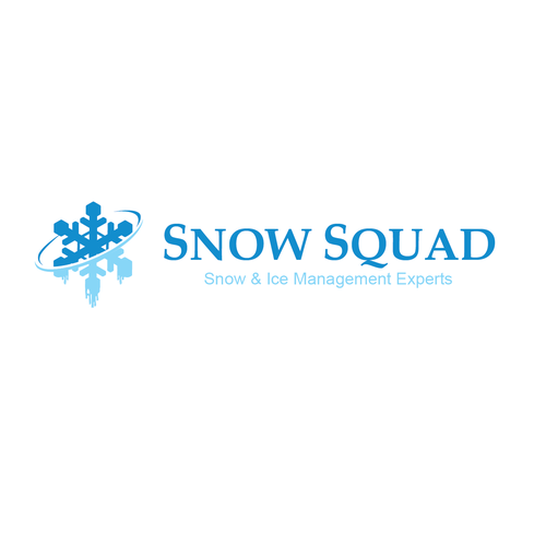 build a simple revolutionary logo for snow removal