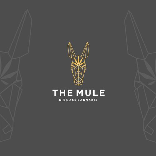 Diseño finalista de JupitersMuse