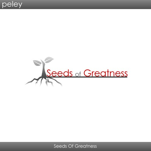 Runner-up design by peley