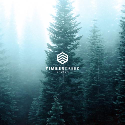 Create a Clean & Unique Logo for TIMBER CREEK Diseño de lobogo