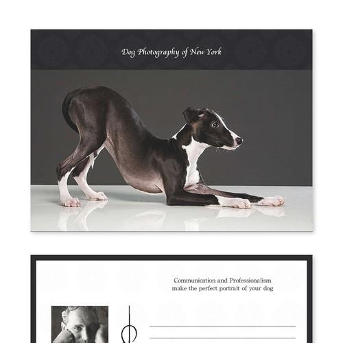 Diseño finalista de C Designz Graphics