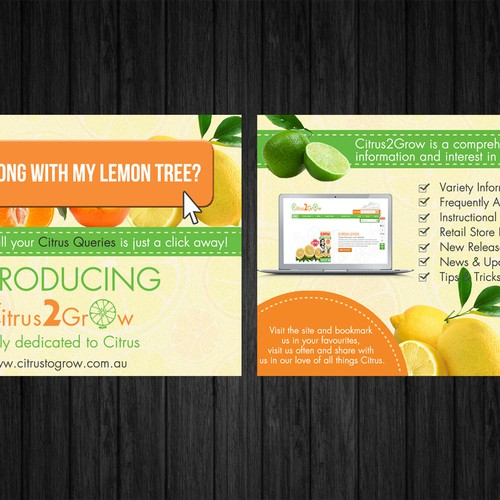 Citrus Site needs eye catching Promotional Post Card with zest and zing Design by HOPE STUDIO