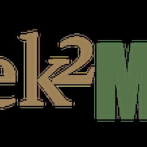 Diseño finalista de larasterman