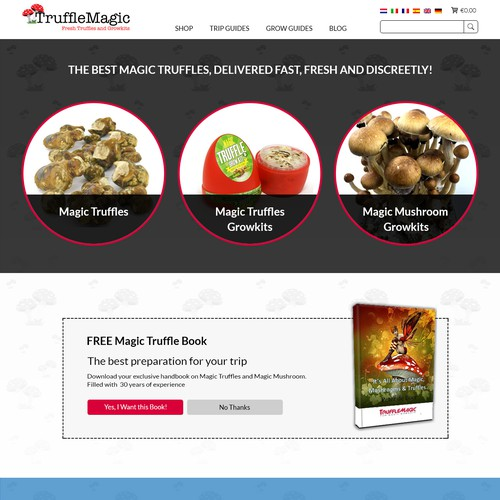 Awesome Redesign of Truffleshop Homepage   Landing page design contest